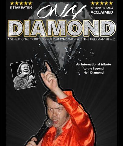 Neil Diamond by Rob 'Tigerman' Hewes