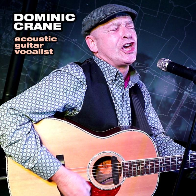 Dominic Crane - acoustic guitar vocalist